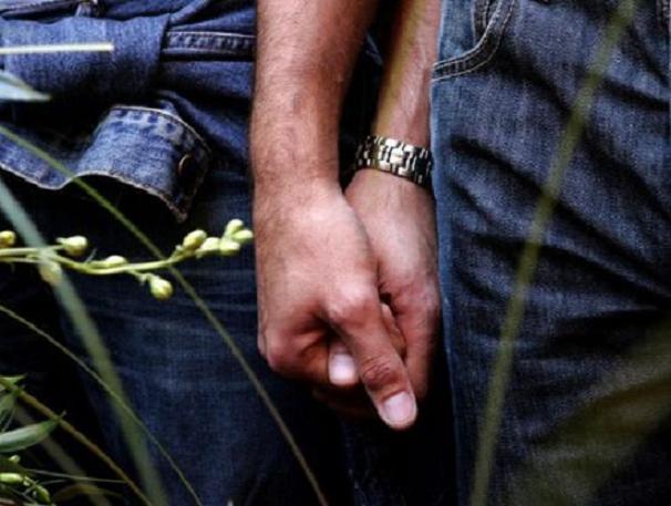 Энциклопедия. Форум. Ученые: только 40 % геев становятся такими из-за ген