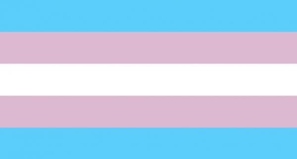 transessualità_bandiera